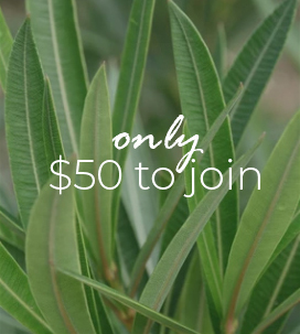 ONLY $50 TO JOIN
